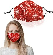 Christmas reusable mask
